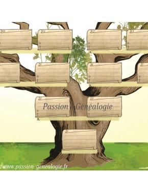 Générama  - base du tronc (5 premières générations)