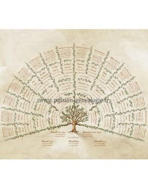 Canopée - Passion Généalogie Illustration complétée